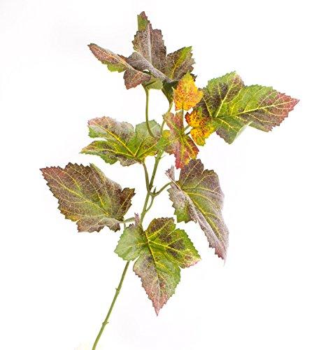 Künstlicher Traubenblatt Zweig NOAH, 10 Blätter, grün-rot, 35 cm - Kunst Zweig / künstlicher Traubenzweig
