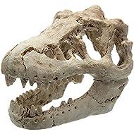 Demiawaking Artificial Dinosaur Skull Aquarium Fish Tank Ornaments Decoration Hidden House Cave Five Styles