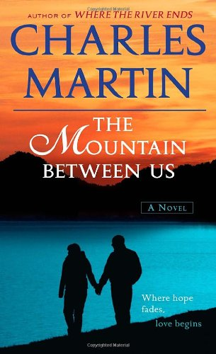 the mountain between us book online free