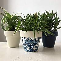 Blue White Damask Mini Terracotta Pots Set of 3
