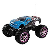 1 10 Scale Rtr Rc Trucks