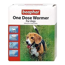 Beaphar One Dose Wormer per cani medi