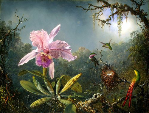 martin-johnson-heade-titel-kunstblumen-cattleya-orchidee-und-drei-brazilian-kolibris-datum-1871-kuns