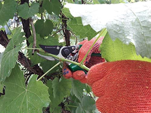 GRÜNTEK Gartenschere FALKE Baumschere - 5