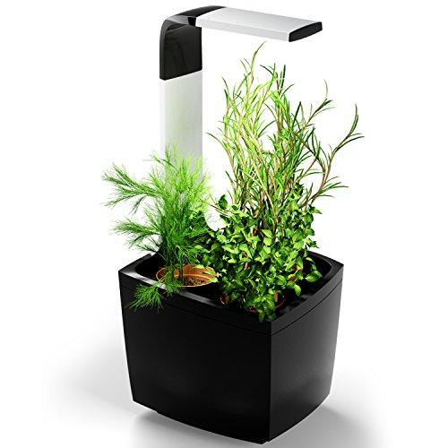 Tregren T3 Potager d'intérieur Connecté 3 plantes, Kit prêt à pousser et Jardinière Autonome pour herbes aromatiques, petits légumes, fleurs - Cultivez avec votre application smartphone - Noir