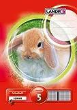 LANDRE 100059749 Schulheft 10er Pack A5 32 Blatt Lineatur 5