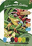 MAMMUT 105103 - Malen nach Zahlen Tiermotiv, Baumfrosch, Komplettset mit bedruckter Malvorlage im A4 Format, 7 Acrylfarben und Pinsel, Malset für Kinder ab 8 Jahre