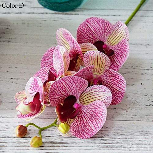 Schmetterlingsorchidee Topf-Ø ca