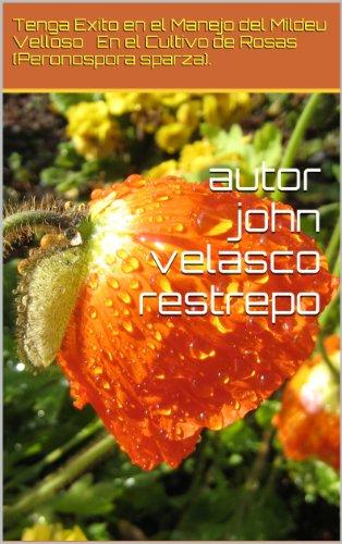 Tenga Exito En el Manejo del Mildeu Velloso en El Cultivo de Rosas por John Velasco