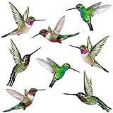 Stickers4 Vogel-Fensteraufkleber zum Schutz gegen Vogelschlag - Acht schöne...