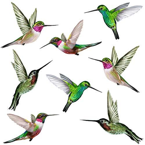 Stickers4 Vogel-Fensteraufkleber zum Schutz gegen Vogelschlag - Acht schöne Kolibri-Glasaufkleber, doppelseitig und selbstklebend zum Schutz gegen Vogelkollisionen
