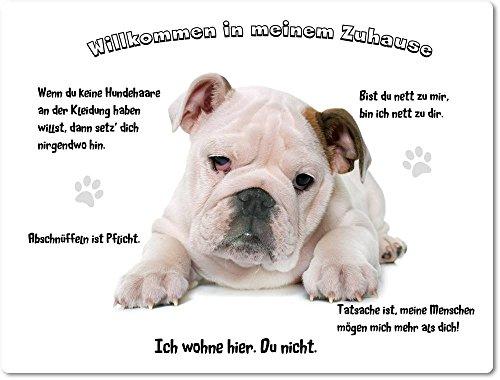 Merchandise for Fans Blechschild/Warnschild/Türschild - Aluminium - 15x20cm - - Willkommen in Meinem Zuhause - Motiv: Englische Bulldogge - 06