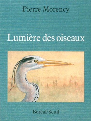 Lumière des oiseaux