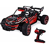Blexy RC Car 1/18 Radio Remote Control Vehicle 2.4Ghz 4WD Off-Road Rock Crawler Stunt Racing Electric Truck Toy For Kids