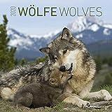 Wölfe 2020 - Wolves - Wandkalender - Broschürenkalender (30 x 60 geöffnet) - Tierkalender - Wandplaner