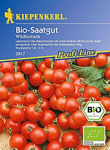 Tomaten Wildtomate Rote Murmel resistent Bio-Saatgut