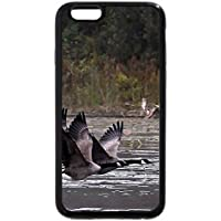 iPhone 6S / iPhone 6 Case (Black) Canada Geese in Flight