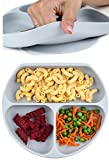 Bumkins Baby Teller mit Saugnapf (Grau) - kippsicher, rutschfest, bruchsicher und haftend, ideal für Beikosteinführung, Baby Led Weaning. Aufgeteilter Silikon-Teller mit 3 Fächern und Ansaugfunktion. BPA-frei