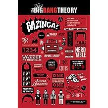 Póster de The Big Bang Theory Infografía Incluye Artículo adicional)