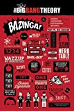 The Big Bang Theory - Infographic - FilmMaxi-Poster, Druck,
