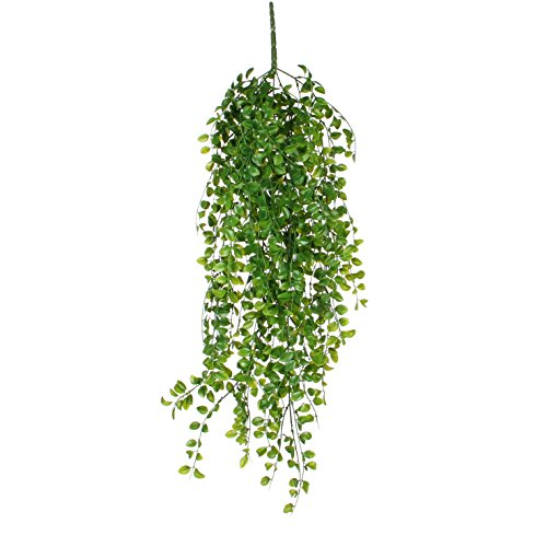 MICA Decorations Ficus Haengend gruen-l81cm Kunstpflanze, Plastik, grün, 81 x 20 x 20 cm, 6-Einheiten