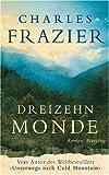 Dreizehn Monde: Roman