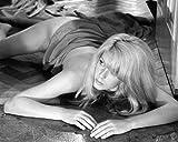 Catherine Deneuve come Carole in Repulsione nudo su appartamento pavimento 10x 8Promozionale fotografia