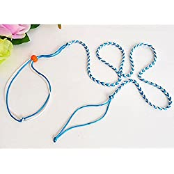 Kicode Collar de Correa Ajustable Conejillo de Indias, Mascotas Cuerda Principal Cuerda de tracción Hamster 1.4M Color Aleatorio