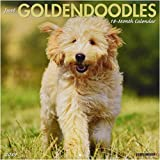 Just Goldendoodles 2019 Wall Calendar (Dog Breed Calendar)