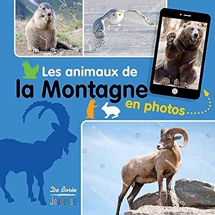 Les animaux de la montagne en photos