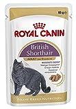 Royal Canin-Feline Breed-Nutrition Wet British Shorthair Adult