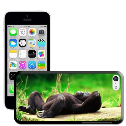 Fancy A Snuggle 'Gorilla Entspannende' Hard Case Clip On Back Cover für Apple iPhone 5 C Gorilla Relaxing