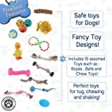 15 Pack Pet Dog Toy Set - Set of Ropes, Balls, Chew Toys etc - Perfect for Tugs, Chewing & Shaking - Safe, Durable & Non-Toxic| Christmas Party Favours, Gift for Dog Lovers