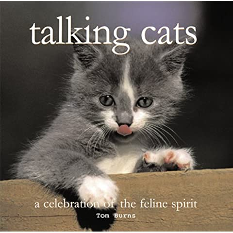 Talking Cats (Inspirationals) (English