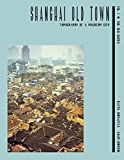 Shanghai Old Town: Topography of a Phantom City. Volume I: The Old Docks -