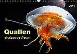 Quallen - einzigartige Wesen (Wandkalender 2019 DIN A3 quer): Sie sind uralt und sehen ganz harmlos aus, doch Quallen gehören zu den giftigsten Tieren ... (Monatskalender, 14 Seiten ) (CALVENDO Tiere)