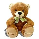 Plüschbär Emmy individuell bestickt, knuddeliges Stofftier individualisiert mit eigenen Daten, Geschenk mit Namen, kuscheliger personalisierter Bär, Plüschtier mit Bestickung, Teddy zur Geburt