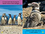 Il-mio-amico-pinguino-Primi-passi-Ediz-illustrata
