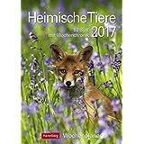 Heimische Tiere - Kalender 2017: Wochenplaner, 53 Blatt mit Wochenchronik