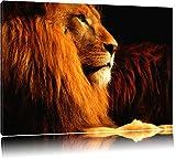 Majestätischer stolzer Löwe Format: 100x70 auf Leinwand, XXL riesige Bilder fertig gerahmt mit Keilrahmen, Kunstdruck auf Wandbild mit Rahmen, günstiger als Gemälde oder Ölbild, kein Poster oder Plakat