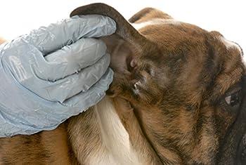 LUCAA+ Nettoyant Oreilles Chiens/Chats 100ml - Nettoyant Auriculaire aux Probiotiques - Bio, Vegan, Naturel