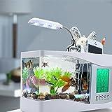 Best Romantique bureau Temps Lampes - YZX LED Lampe De Bureau Mini Creative Nouveauté Review