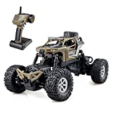 GizmoVine 1:16 Scale RC Car Off-Road Rock Crawler 12MPH Steering Splash 2.4GHZ 4WD - Best Reviews Guide