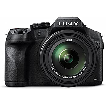 Panasonic Lumix DMC-FZ300 - Cámara Bridge de 12.1 MP (Zoom de 24X ...