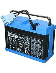 Peg Perego–Batterie 12V