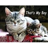 Tabby Cats, That's My Boy Fridge Magnet
