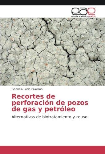 Descargar Libro Recortes de perforación de pozos de gas y petróleo: Alternativas de biotratamiento y reuso de Gabriela Lucía Paladino