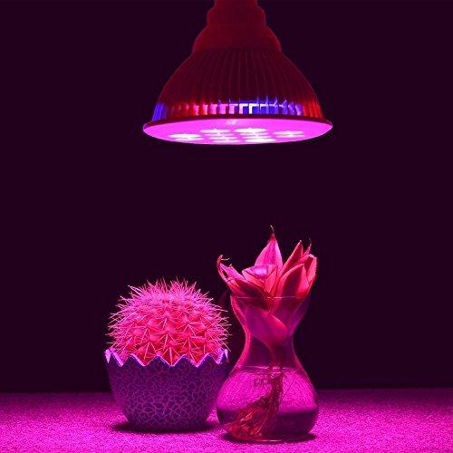 Idroponica pianta del LED coltiva le luci