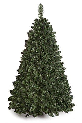 DWA ARBOL Navidad Grande Abeto del Cáucaso Nuevo, en Caja, Bosque Tradicional...