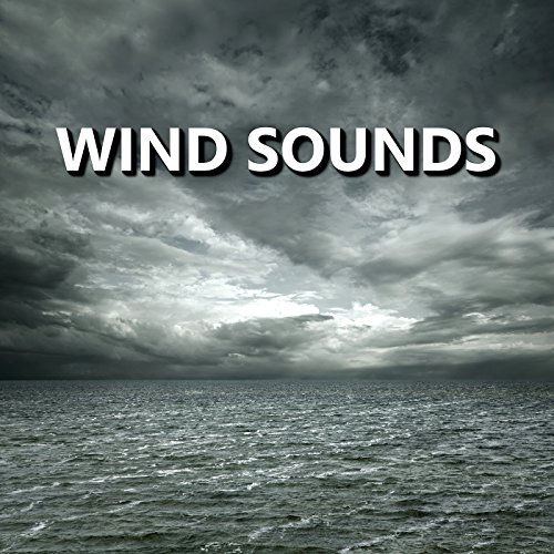 Solid Wind (Solid Eventide Wind Sounds)